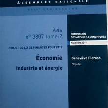 Publication de mon rapport pour avis sur le budget de l&#039;industrie et de l&#039;nergie
