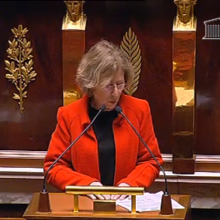 Intervention en sance sur le principe de prcaution